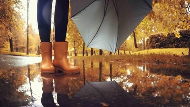 Five Fall Health Tips
