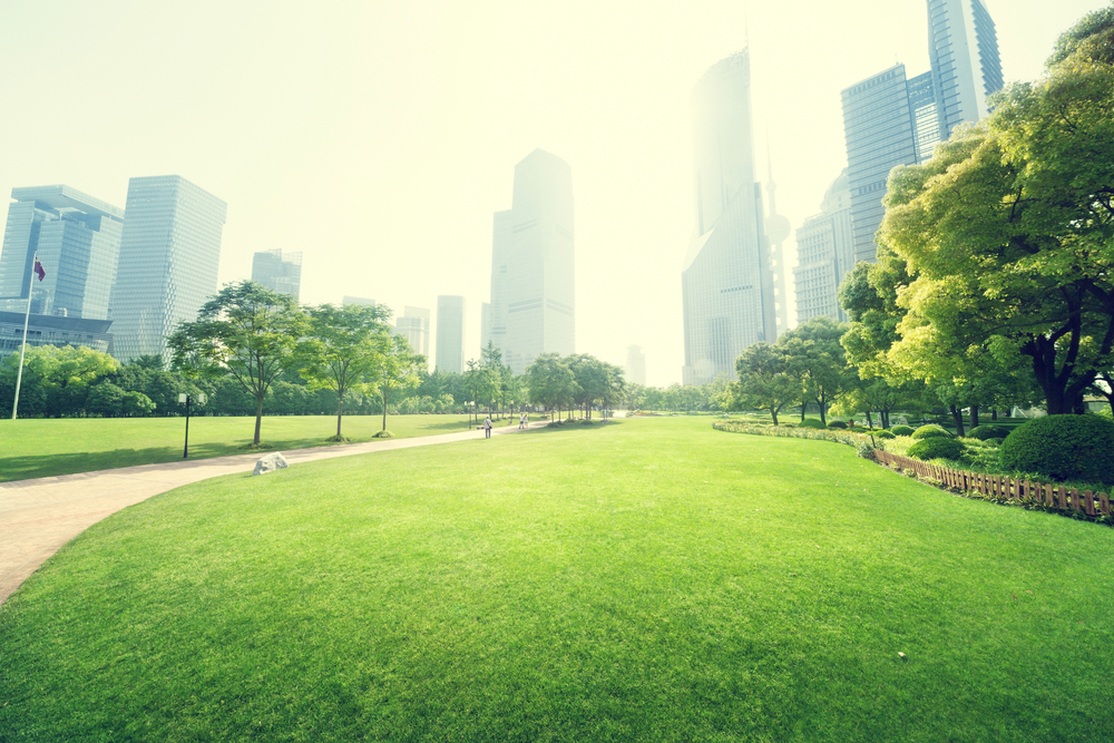 4 Reasons to Include Environmental Wellness in Your Wellness Program